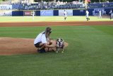 Dog on Pitch Mound at Tito's Vodka Bark in the Park