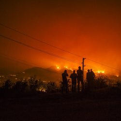 Direct Relief Firefighters Fight Thomas Fire